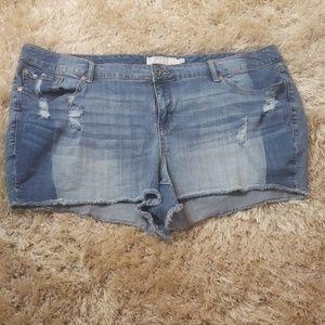Torrid 24 Blue Jean Destructed Frayed Edge Shorts